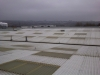 Rooflight replacement & Roof Painting works - Newcastle - Before Refurb